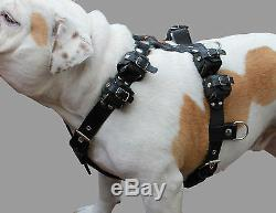 Real Leather Weighted Pulling Dog Harness Exercise Training 10 Lbs 35-44 Chest